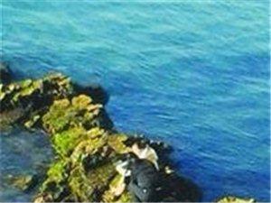 贵州女子遭男友抛弃来青跳海自杀