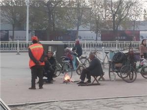 菏泽城区焚烧垃圾树叶是个问题
