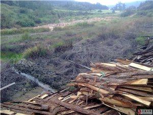 高阜水东瑞溪污染严重的活性炭厂为什么这么多年关不了?环境监管部门干嘛的