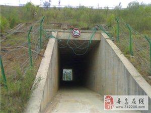 危险铁丝网:吉潭往大历路过小田-有图