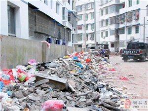 桐木坪廉租房居民小区建筑垃圾堆积如山