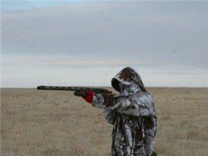 看美女西伯利亚猎狼 大吃狼肉包子。