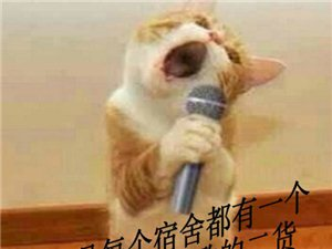 每个宿舍都有整天在宿舍唱歌的二货