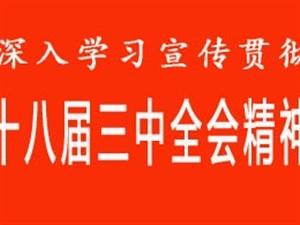 学习贯彻落实党的十八届三中全会精神(提纲)
