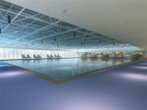 六合体育馆游泳健身马年即将上演!