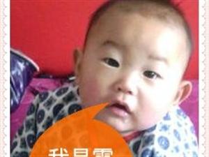 霍以勒  男      一岁零九个月