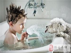 狗狗的世界只有温暖续二