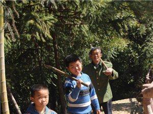 连城县黄润通一家五代人 八十年的坚守
