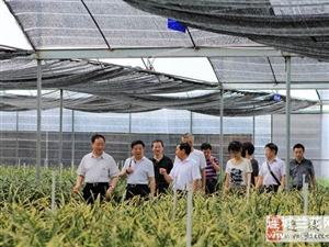 上海市嘉定区领导到公司考察