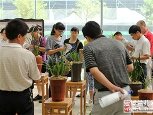 某旅行团参观连城兰花博览园