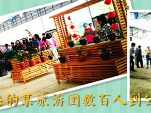 来自香港的某旅游团数百人到公司参观