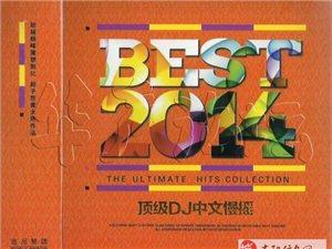 群星《BEST2014顶级DJ中文慢摇》(2CD)[320K/MP3/