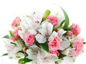 七彩鲜花店QQ好友一律优惠。