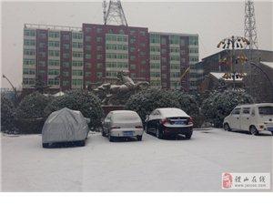 雪景添年味