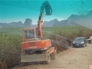 甘蔗装载车