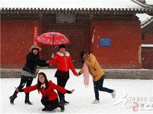 户外尽情享受飞雪中的乐趣