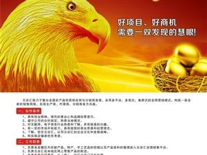 创业新农村 实现中国梦