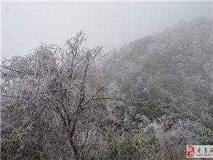寻乌迎来几十年一遇大雪,项山雪景美如画