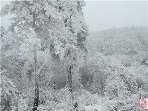 爬雪山,欣赏牛坡头冬景(图片+影视)