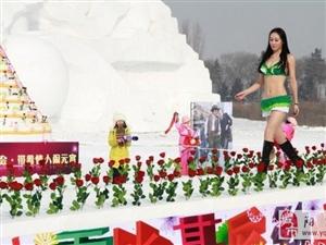 2014哈尔滨情人节雪博会