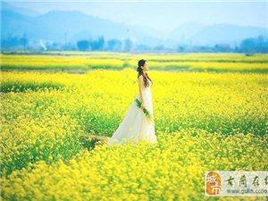 泸州苏菲雅婚纱【在那花儿盛开的地方】