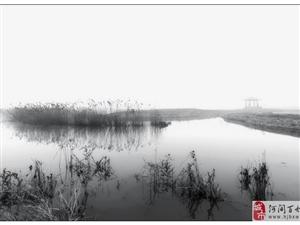 在建中的瀛州公园