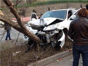 红军渡一小车爬树车头受损严重