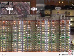 视频: 走进售楼部高州乐天・海珀御庭―高州在线
