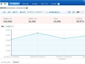 大邑网网站流量报告:2014年1月
