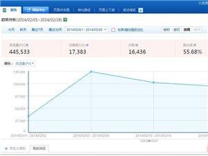 大邑网网站流量报告:2014年2月