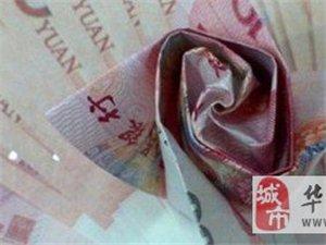 杭州小伙用20万现金折999朵玫瑰求婚,要是我猪八戒我也愿意嫁给他
