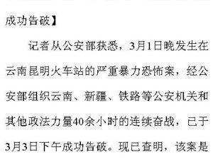 """昆明火车站""""3·01""""严重暴力恐怖案成功告破"""