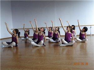 【月舞秋桦】舞蹈工作室教学过程展示