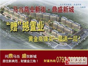 彭�神R��商�I新街――鼎盛新城