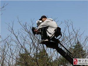 【电影《凤凰谷》】你想知道剧组是如何拍摄电影的吗?