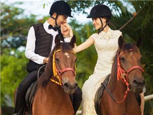 施华洛婚纱摄影您明智的选择――0635-8681314