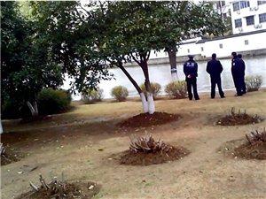 苏州平四路护城河旁发现一具女尸体警方也赶到现场