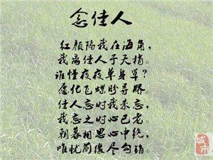 008念佳人-杨欣
