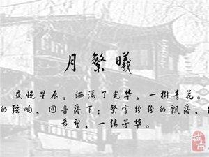 005月繁曦-张蒙