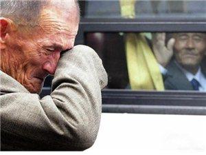 史上最催泪的40张照片 你能坚持到第几张?