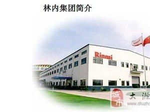 上海林内滁州旗舰一店、二店及天长店三月盛大开业!
