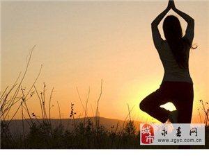 瑜伽――寂寞里的繁华