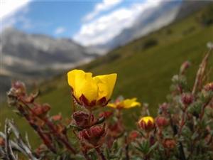 襄阳美利达骑友骑行西藏,路过利川美利达自行车店,老板热情的服务,赞一个