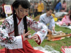 武汉东湖梅园内古装美女茶艺师展示茶道艺术