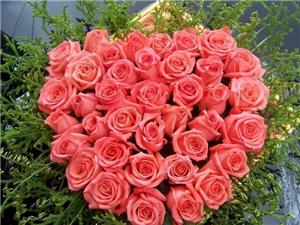 8款春夏季婚礼常用鲜花花语