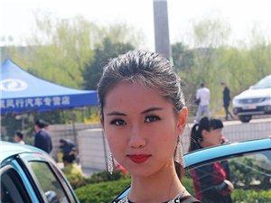 2014年春季新密车展(西广场,多图,车模)