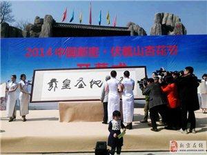 2014年新密杏花节幕式