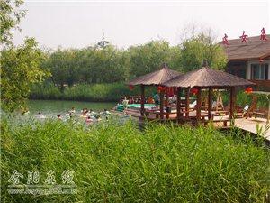 """5月30日洽川湿地""""千人帐篷节""""提供景区免费门票"""