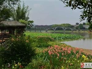 大足花�育�水湖景�^