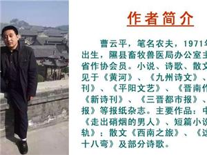 《咏隰州》作者:曹云平